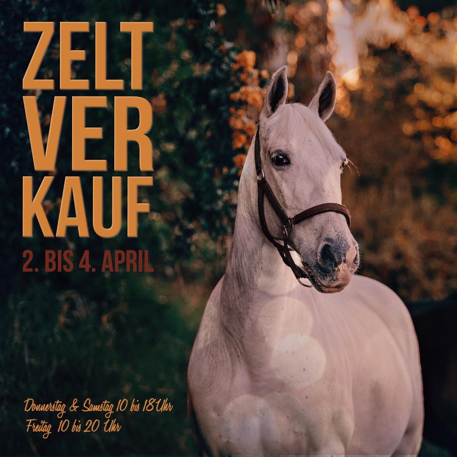 Ankündigung Website Zeltverkauf Reitsport Beyer